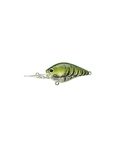 S.K.T. Mini DR color Watermelon Craw
