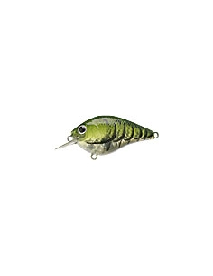 S.K.T. Mini MR color Watermelon Craw