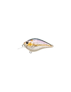S.K.T. Mini MR color MS American Shad