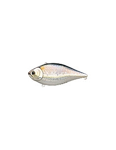 LVR D-10 color MS American Shad