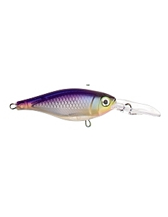 X-Rap Shad Slashbait 08 color Purpledescent