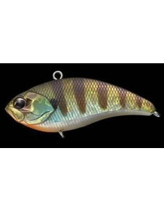 Whizzer color Baby Gill