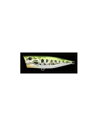 G-Splash 80 color Aurora Bass