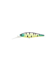 Pointer 100DD color Mat Tiger