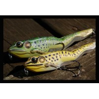 Live Target Frogs