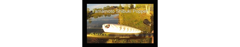 Gary Yamamoto Shibuki