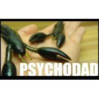 """Kinami Psychodad 4"""""""