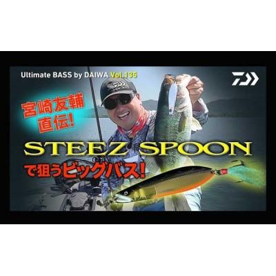 Daiwa Steez Spoon