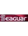 Seaguard